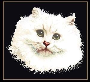 White Persian Cat,GOK1045,Thea Gouverneur