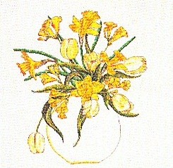 Daffodil Bouquet by Thea Gouverneur