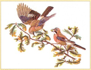 Birds On Branch by Thea Gouverneur