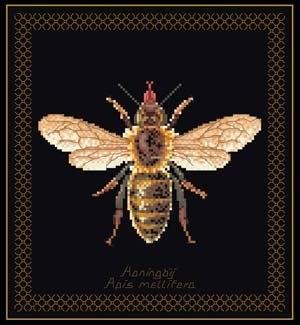 Bee,GOK3017,Thea Gouverneur