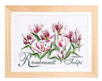 Rembrandt Tulips by Thea Gouverneur