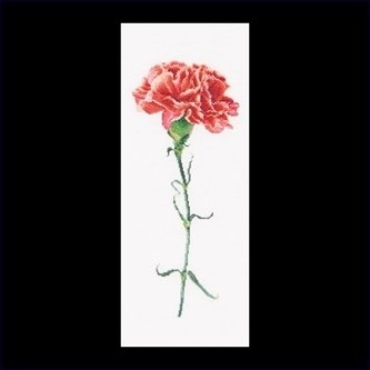Carnation Red,GOK465,Thea Gouverneur
