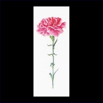 Carnation pink,GOK467,Thea Gouverneur