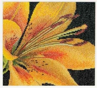 Lily,GOK486,Thea Gouverneur