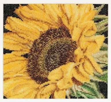 Sunflower,GOK488,Thea Gouverneur