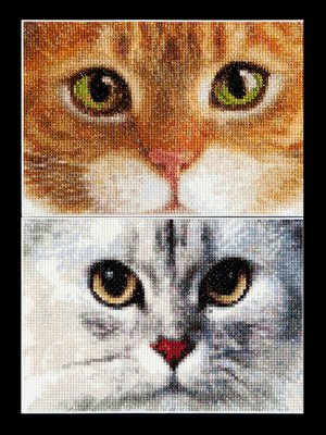 Cats - Tiger & Kitty by Thea Gouverneur