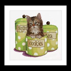 Thea Gouverneur GOK735 Cookie Time