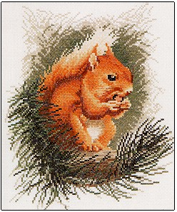 Red Squirrel by John Stubbs - Wildlife Collection