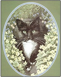 Black & White Cat by John Stubbs - Cats Collection