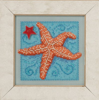 Starfish,MH141615,Mill Hill