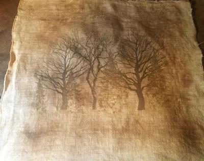 Sepia toned Trees by Kanikis